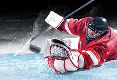 mysports_goalie_web5.jpg